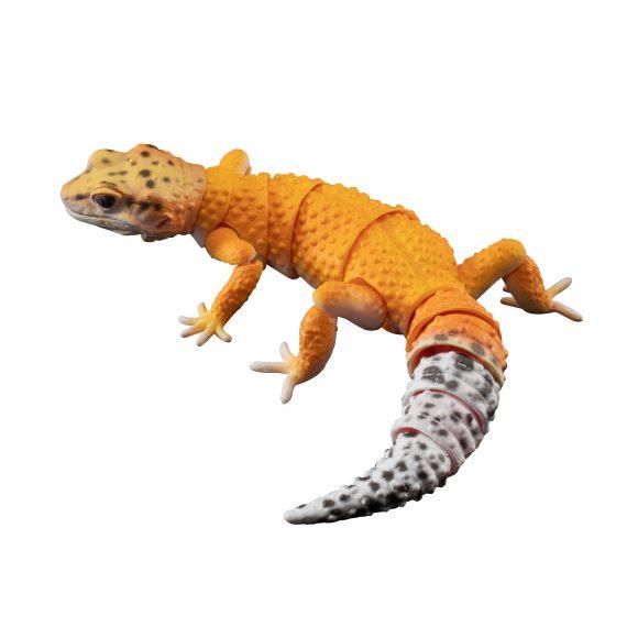 いきもの大図鑑アドバンス ヒョウモントカゲモドキの豹紋の彩色方法